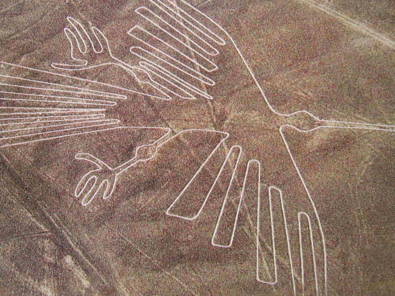 Nazca_Bird.jpg