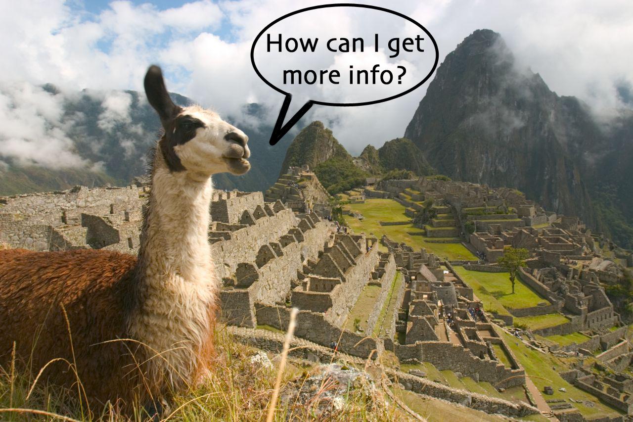 talking-llama.jpg